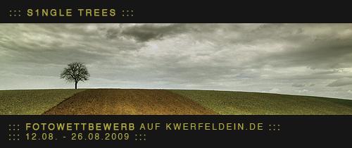 wettbewerb-finale-3