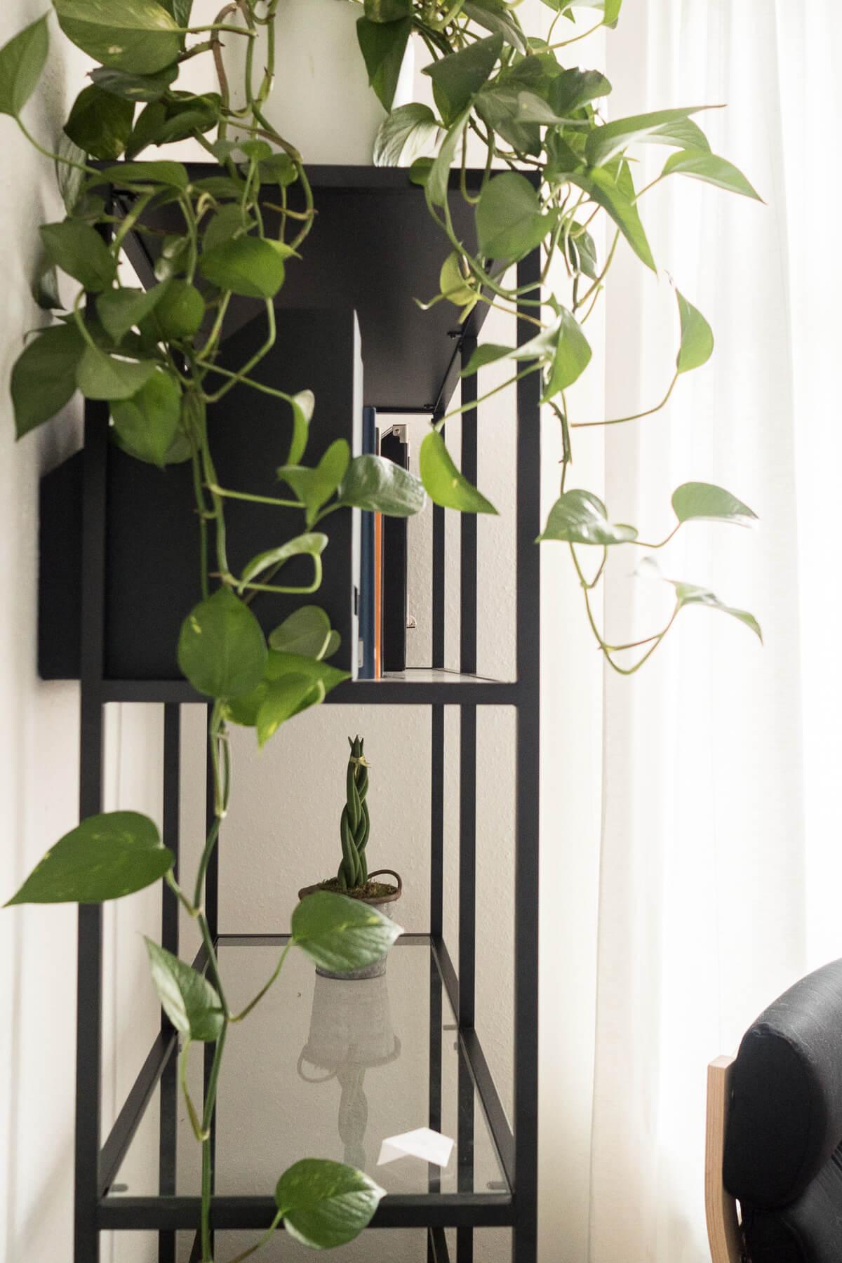 Interior IKEA Vittsjö Regal