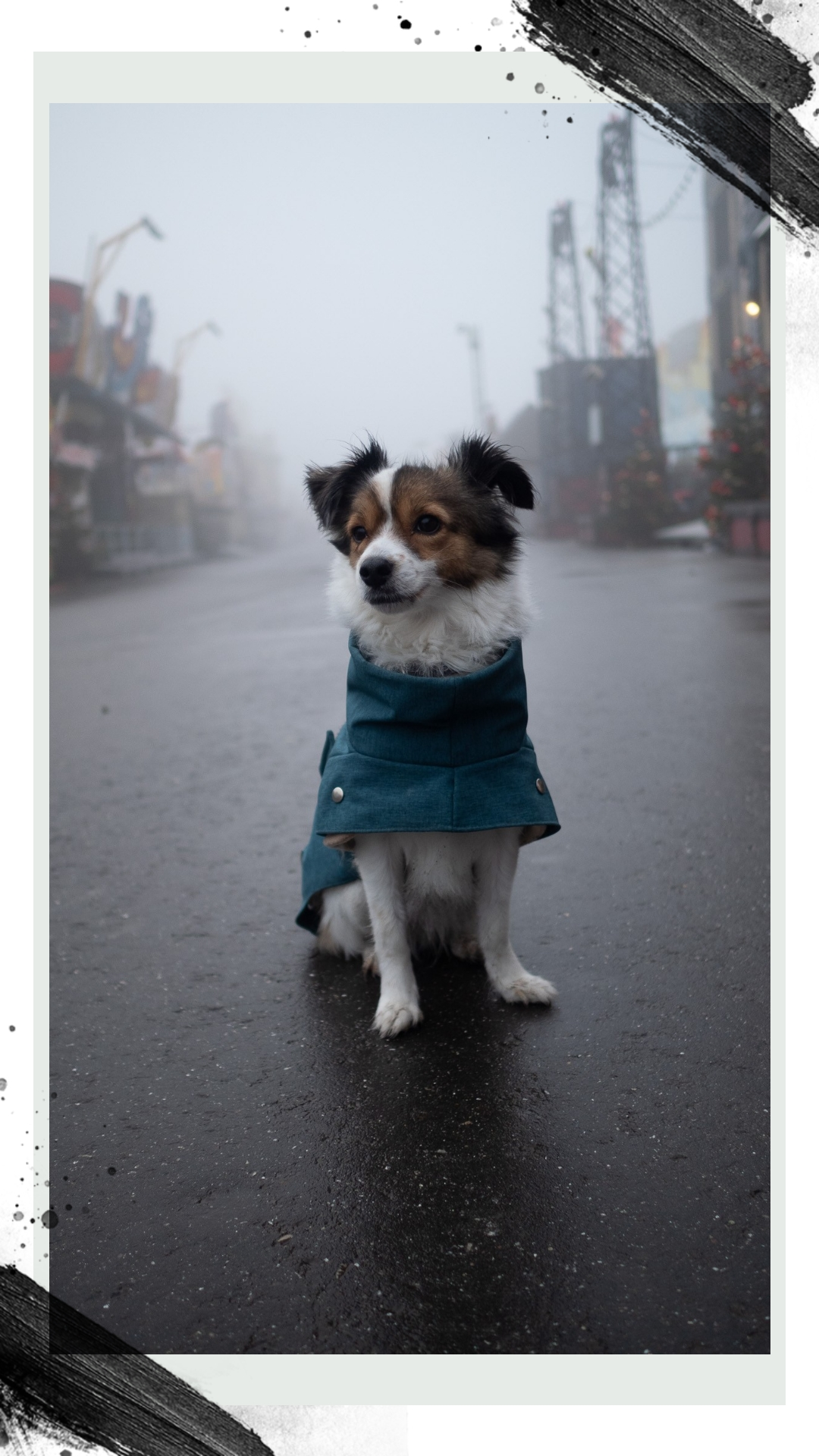 Yaska mit Hundemantel